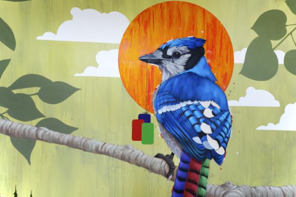 A mural by local artist Blaine Fontana features hidden strain tiles.