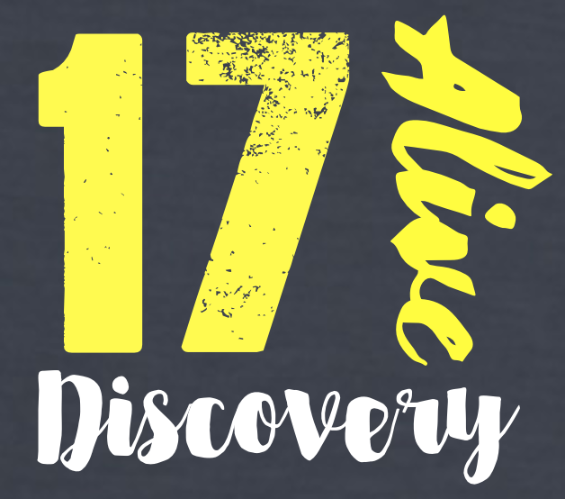 discovery17logo