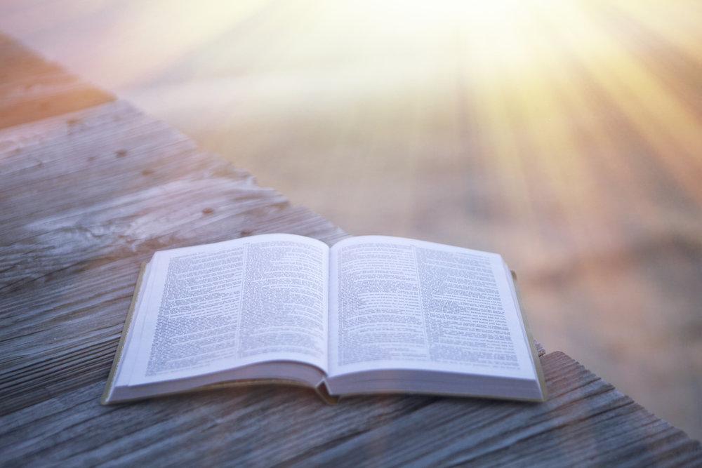 summer_bible