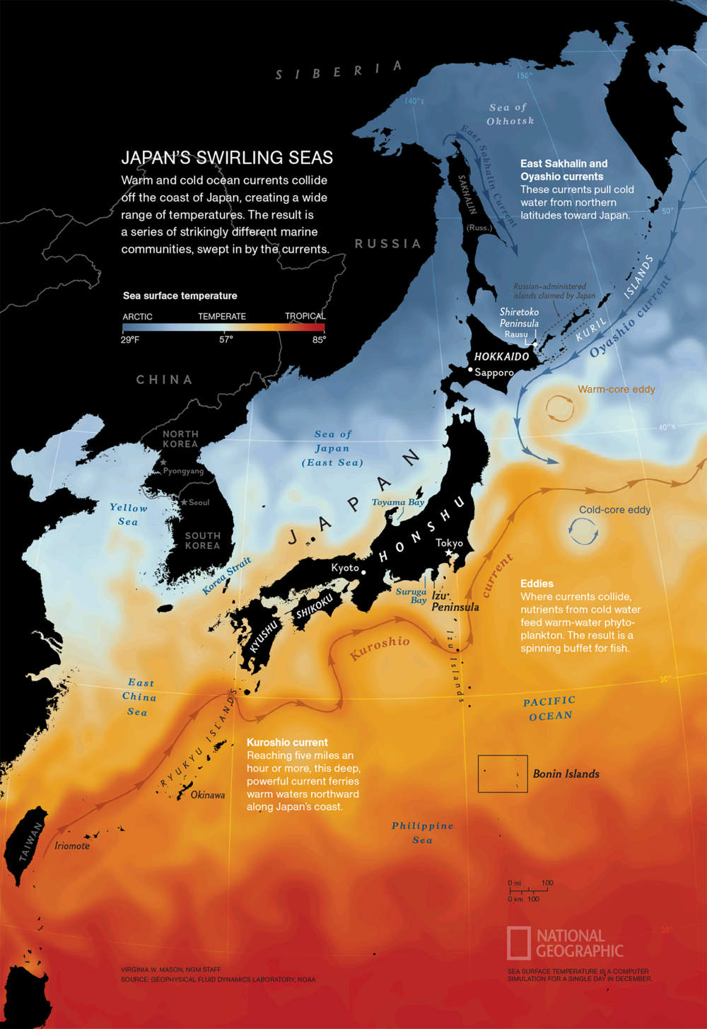 Japan's Swirling Seas