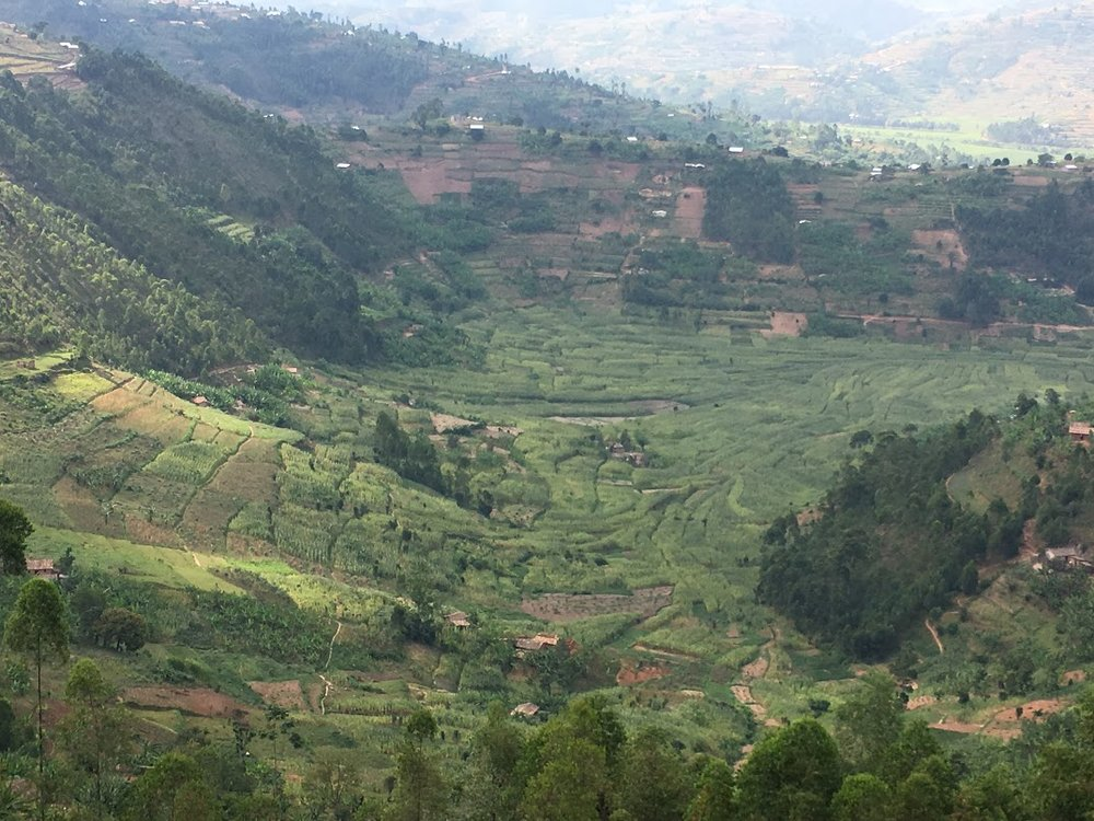 Rwanda is incredibly beautiful by the way