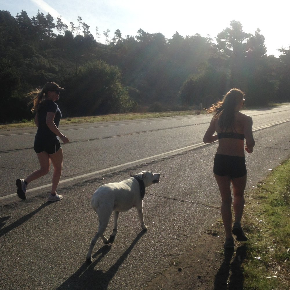 Katie, Kona, and Devon joined me for a bit on the south side of Cambria.