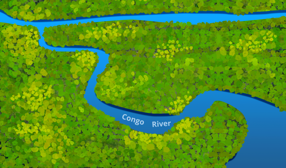 local map-congo rainforest-0506.png