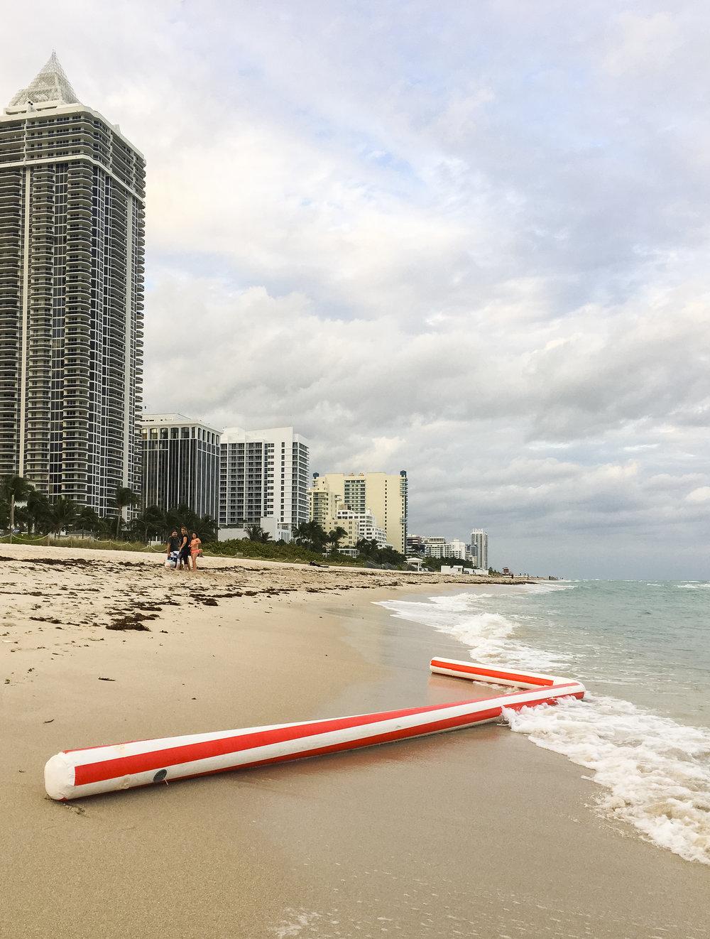 Cruder_LaPenta_Natural_Plasticity_Miami-8532.jpg