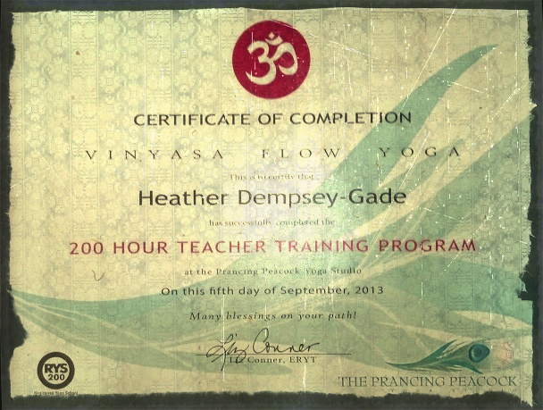 yoga teacher training cert!.jpg