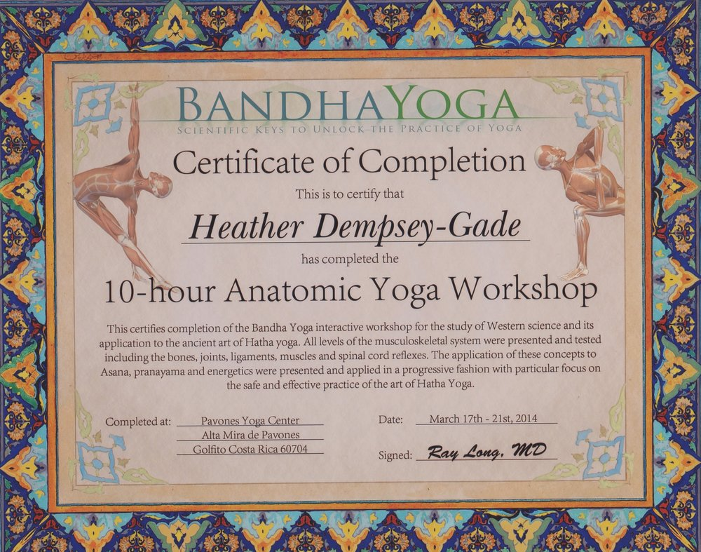 Yoga - anatomic yoga workshop.jpeg