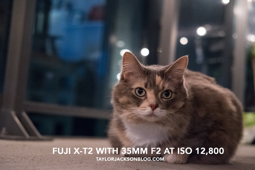 FUJI-X-T2-HIGH-ISO-TEST