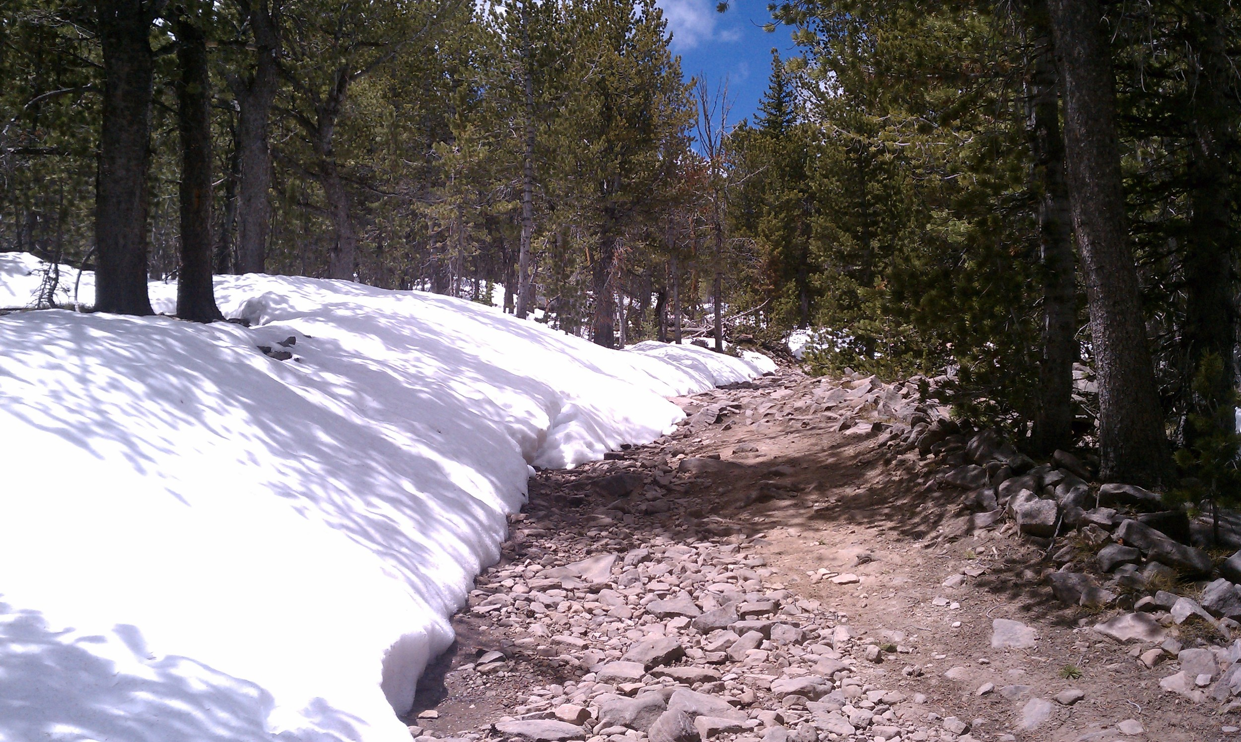 Wind River Range Area Conditions Update - Shoshone Lake Road at FS boundary