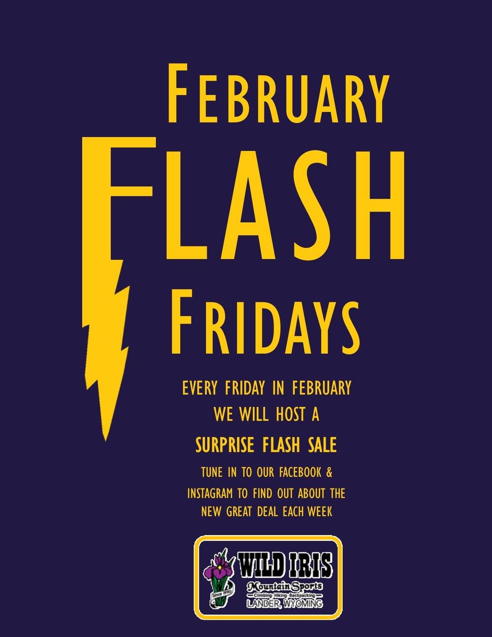 Feb Flash Fridays 3.jpg