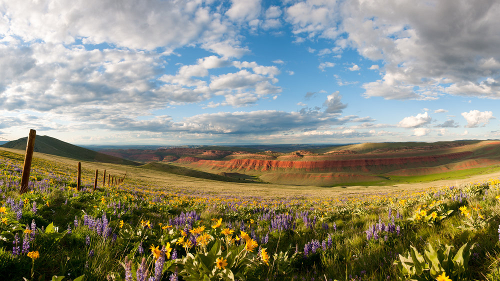 Sunset Over Red Canyon - © Scott CopelandBuy raffle tickets to Support The Nature Conservancy in Wyoming and the opportunity to WIN this Scott Copeland Image!