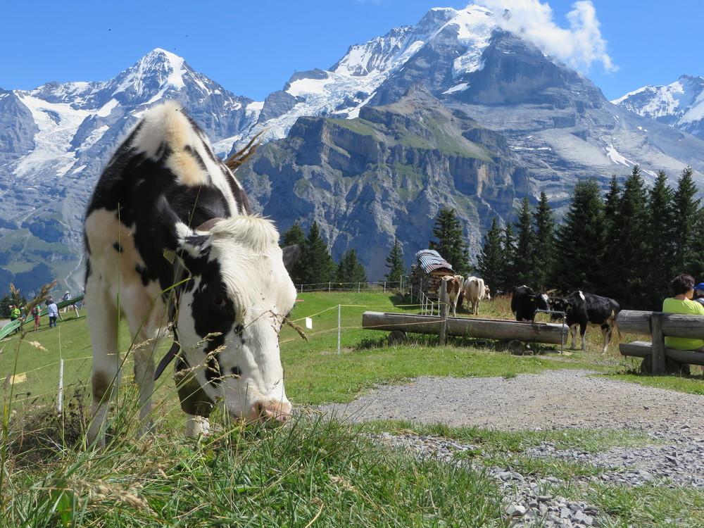 Switzerland-18.JPG