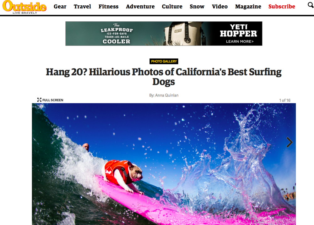 "Hang 20? Hilarious Photos of California's Best Surfing Dogs    - "" Learning to surf can be a daunting endeavor. If you're lucky enough to have an experienced friend guide you through the gear choices and give you some tips so you don't look like a total kook, you've still got to contend with variable weather, wave conditions, and you better acquire a taste for saltwater. Just in case all of that wasn't intimidating enough, now you have to face the fact that there are dogs out there who can probably handle a wave better than you.""    Outside Online, October 2015"