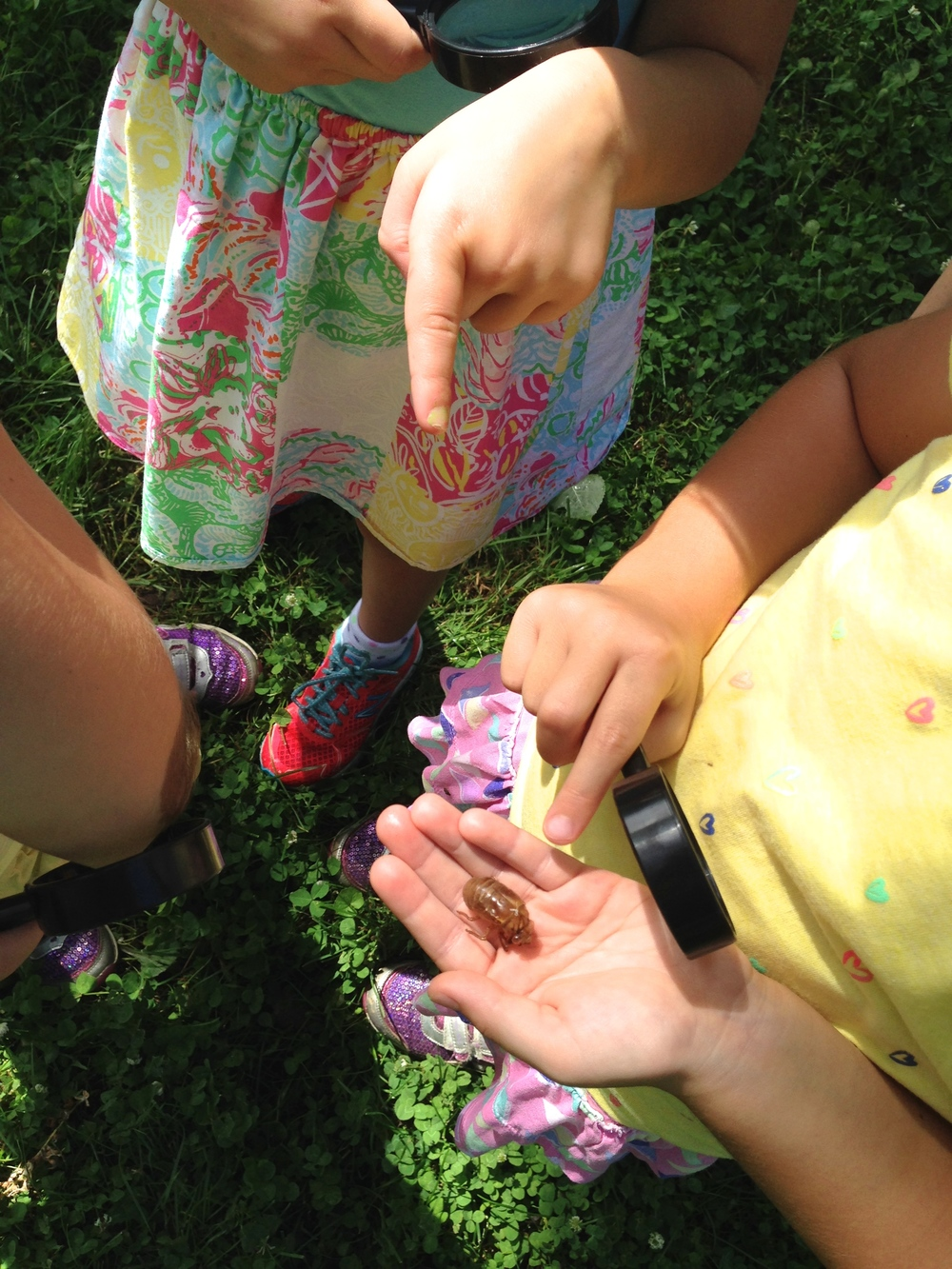 Summer campers explore a cicada exoskeleton they found on their nature walk.