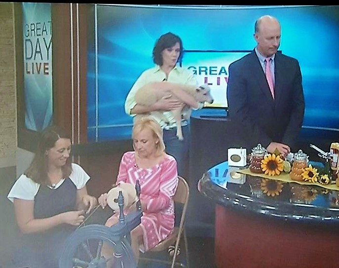 On WHAS-11 Great Day Live with my famous Ashford Traveller