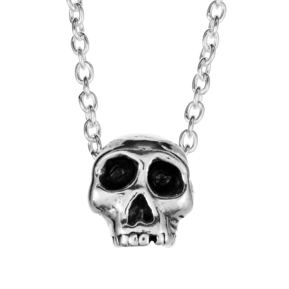 1052-_Sm_3D_Skull_WEB.jpg