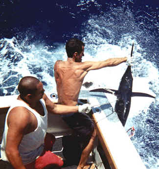 Kauai offshore marlin fishing