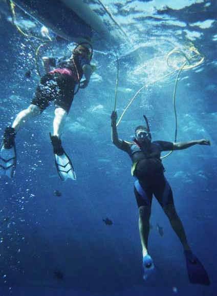 Scuba diving off Maui