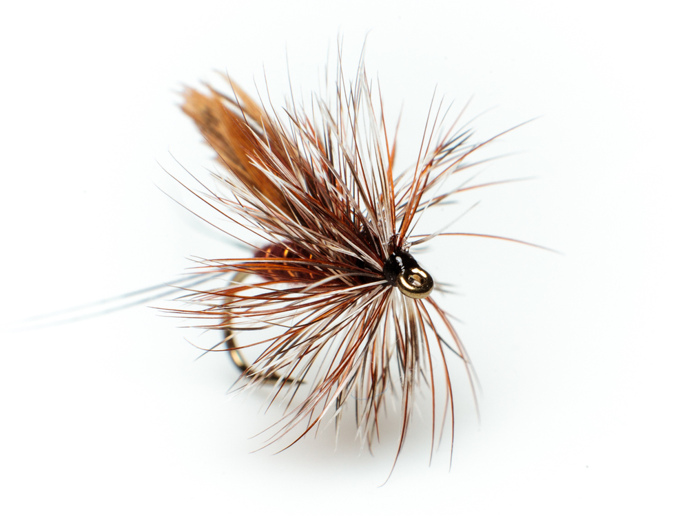 Highland dun – dry fly