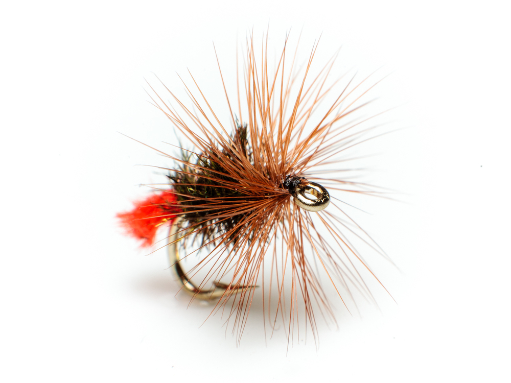 Red tag – dry fly