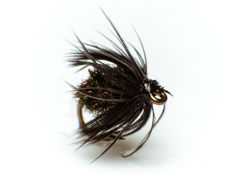 Black and peacock – wet fly