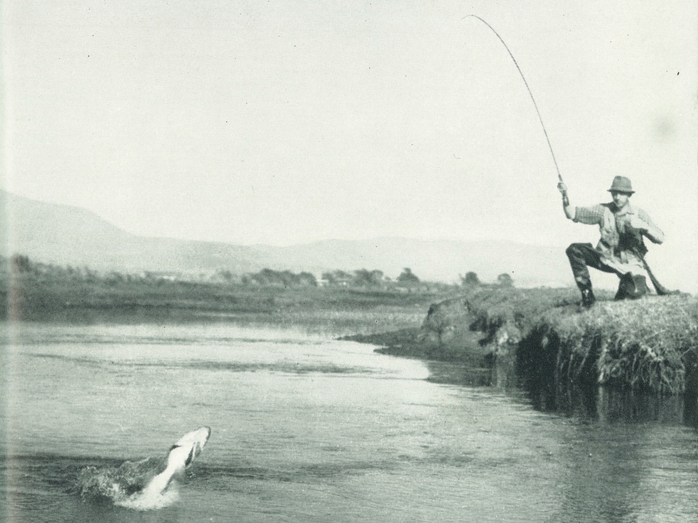 David Scholes on the lower Macquarie River, Tasmania. Fly-fisher in Tasmania plate 12, page 83.