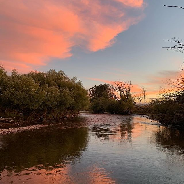 Twilight on the river.😍#CamdenFishing #TheSeasonNeverEnds #Flyfishing #FlyFishingTasmania #Tasmania #TassieTrout #TassieStyle #DiscoverTasmania #FlyOrDie #DriftBoats #KeepEmWet #FlyGuide #GuideLife #GetAFlyGuide #ManicMates #WFFC2019 @manic_tackle_project @scottflyrods @hatchoutdoors @simmsfishing @scientificanglers