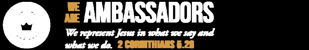 values-ambassador.png