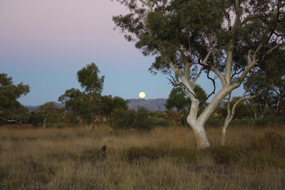 Karijini Moonset.JPG