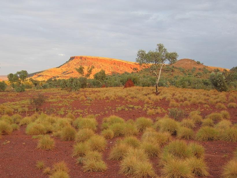 And again, those Pilbara colours.jpg