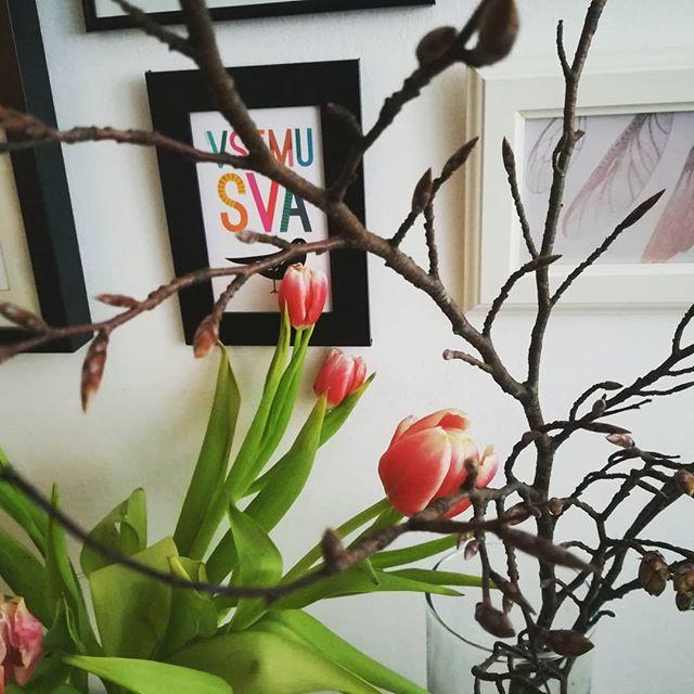 Vrt in gozd in pomlad na jedilni mizi🌷🌳🌻 #kerzazunajnibit #vsemusvakos #recedrevotulipanu #inskupajseigratapomlad