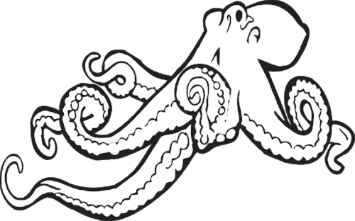 octopus-312381_1280.png