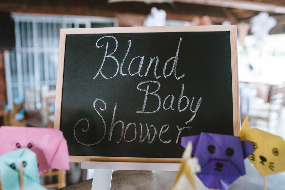 Baby Shower 2018-8.jpg