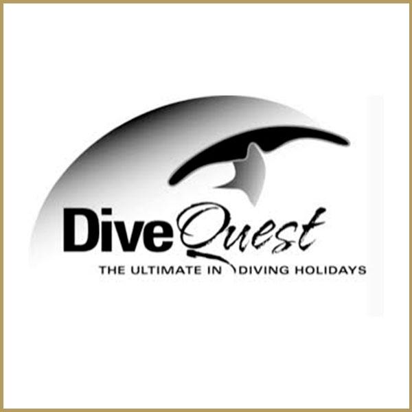 dive-quest.jpg