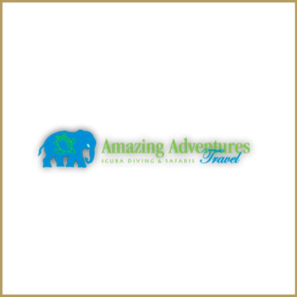 amazing-adventures.jpg