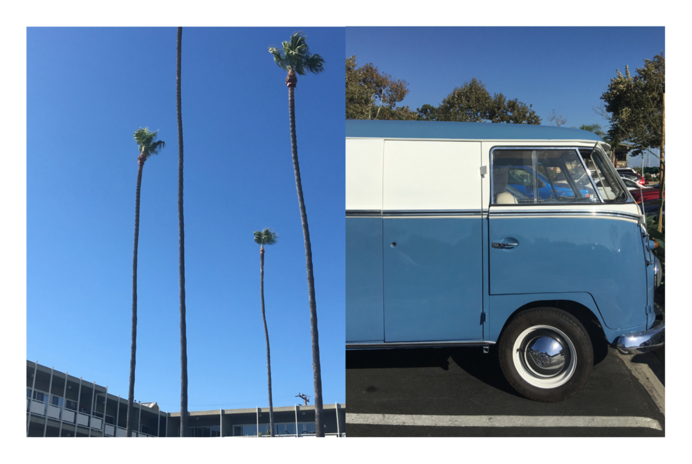 Photography: Marcus Hay, Left: Palm Trees stretch to heaven, Right: Dana Point, VW Classic