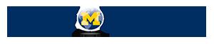FFMI logo sm.png