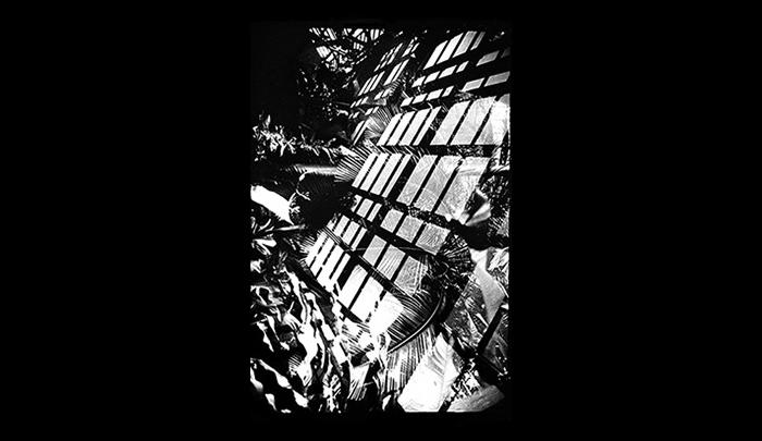 Plantation-01.jpg