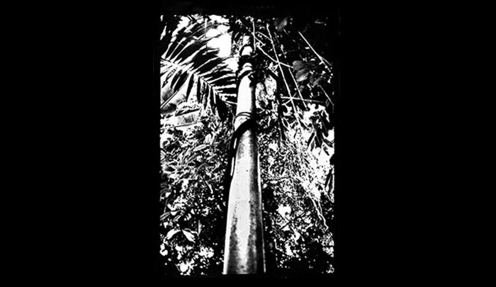 Plantation-03.jpg