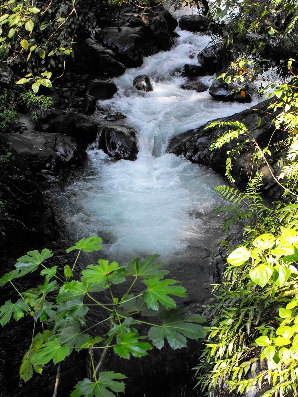 Waterfall-1-DSCF6195.jpg