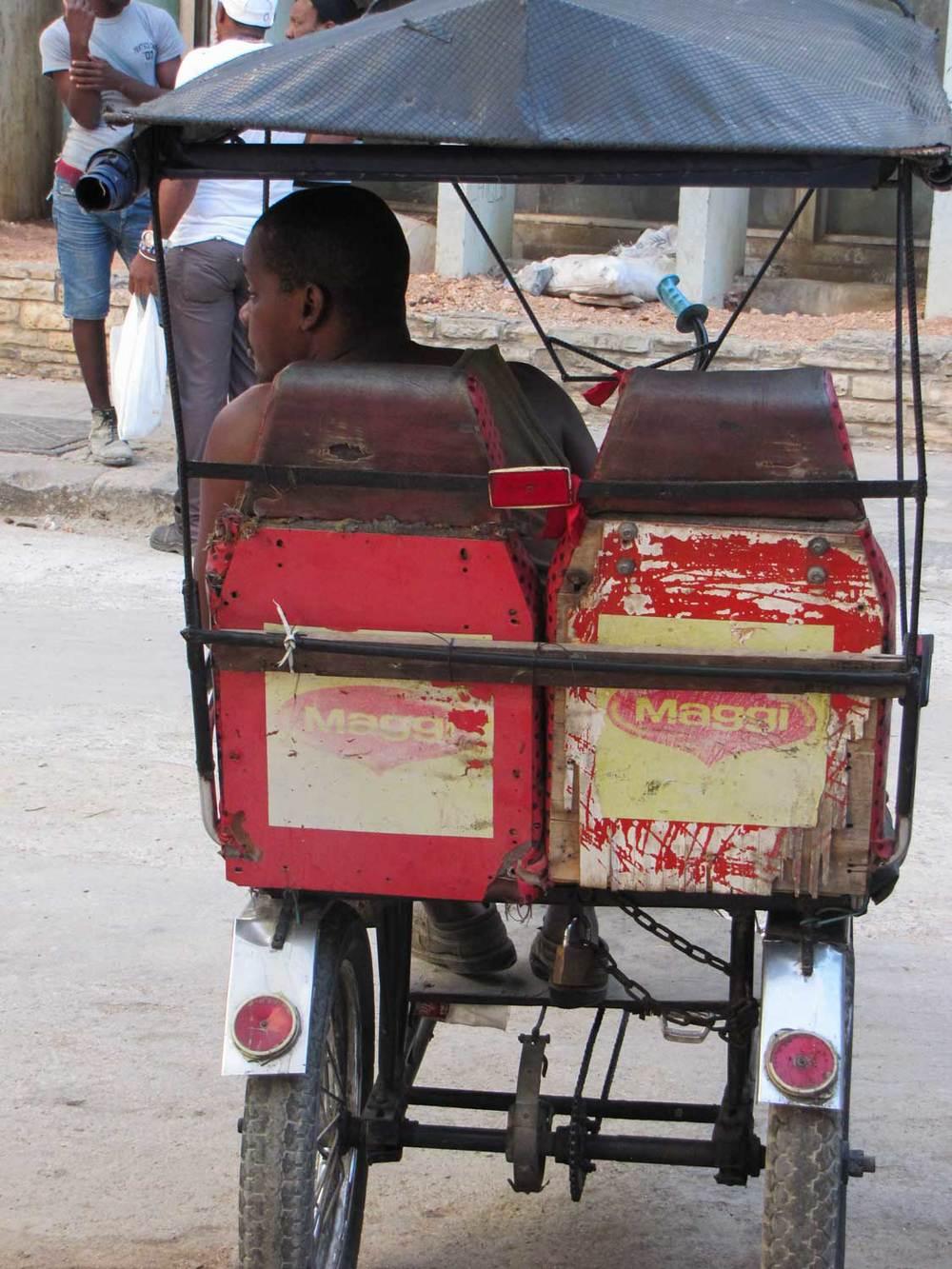 RickshawIMG_9759.jpg