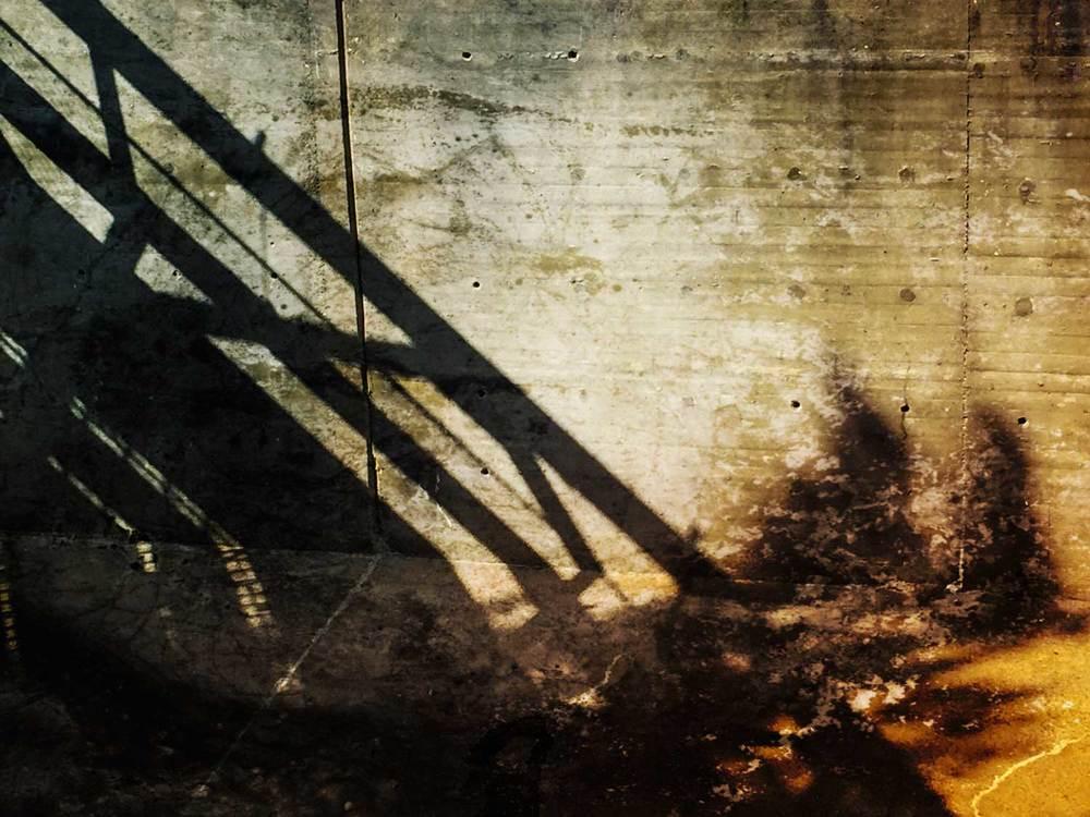 Shadow-Moca-2IMG_3899.jpg