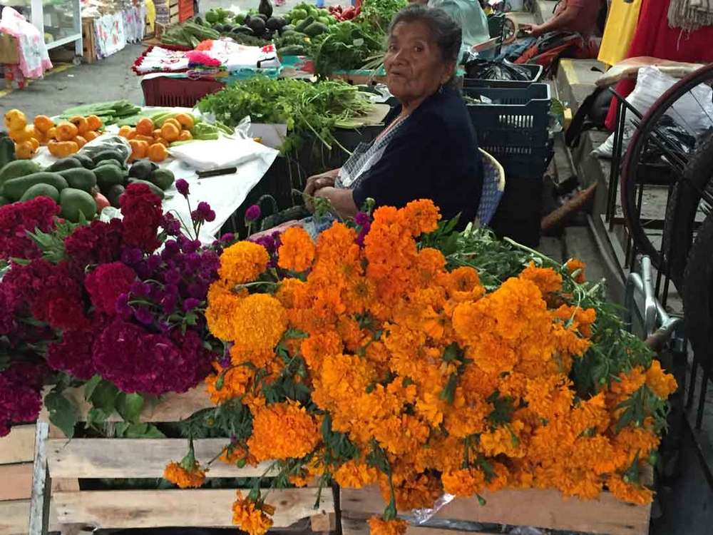 Woman-&-flowersIMG_4999.jpg