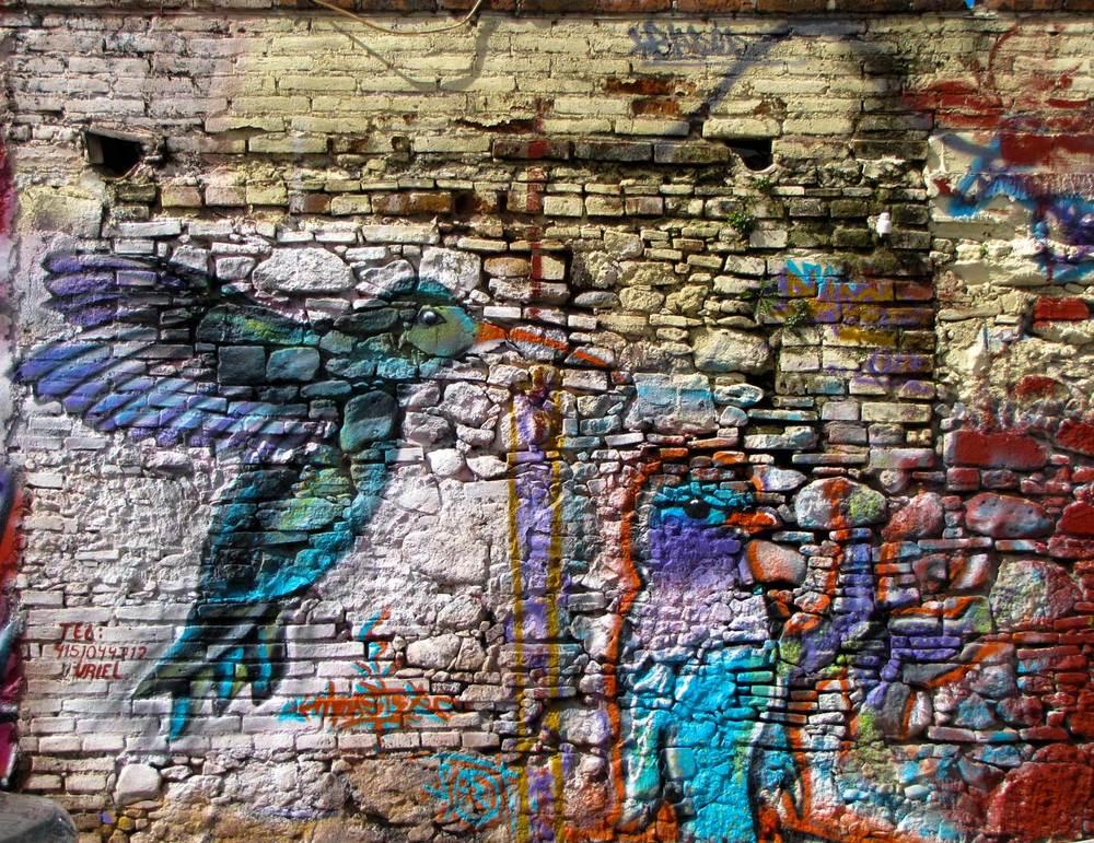 HummingbirdIMG_5801.jpg