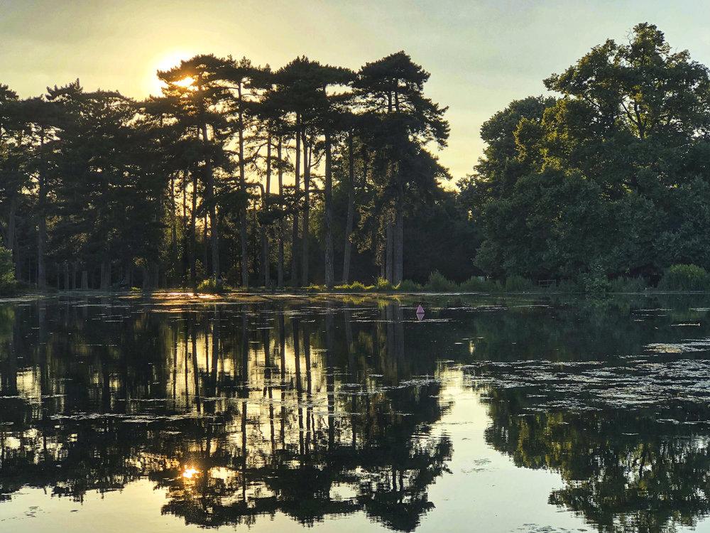 Bois de BoulogneIMG_0741.jpg