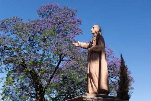 Jacaranda and priest: Colors in nature and culture