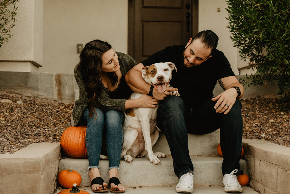 couples+session+with+dog