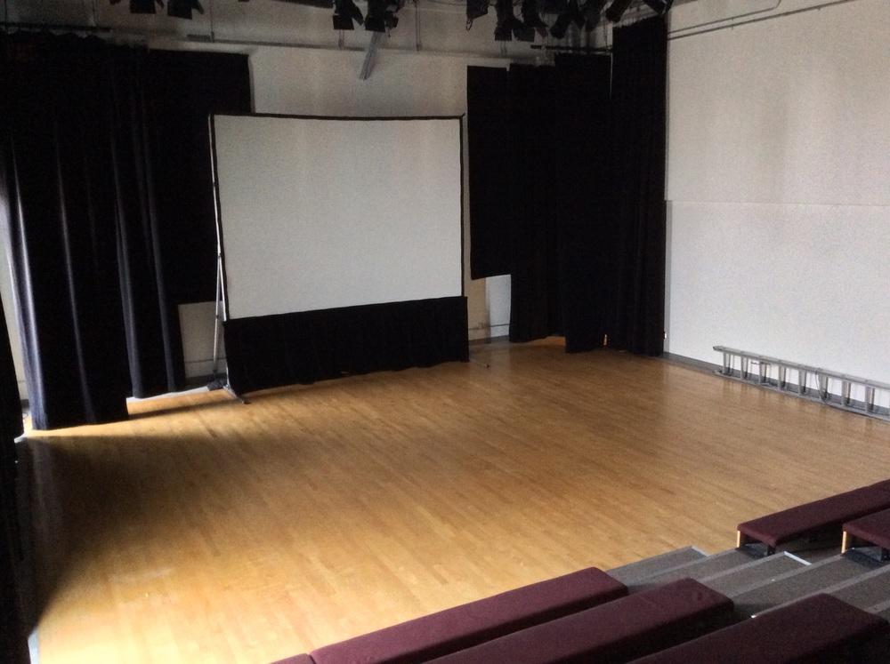 Theatre_Screen3 (2).jpg