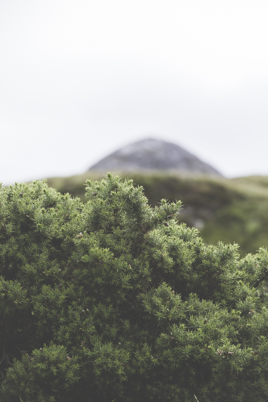 Irlande_6.jpg
