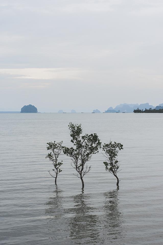 thailande_5.jpg