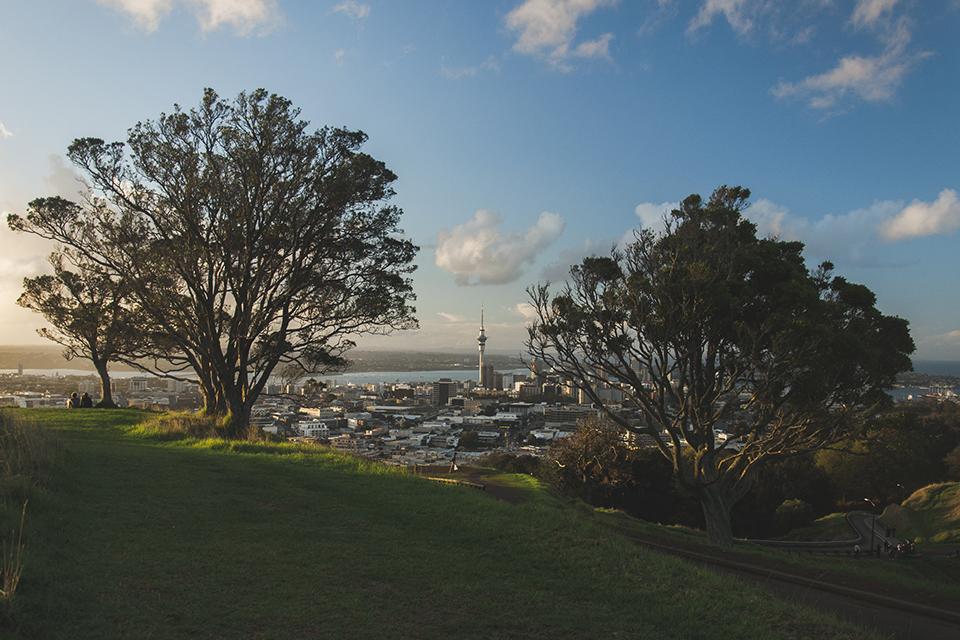 NZ_58.jpg